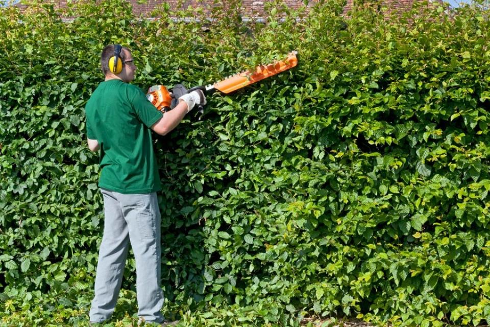Esat aede entretien et cr ation d espaces verts 77 et 93 for Espace vert 95