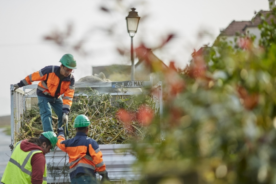 entretien-espaces-verts-esat